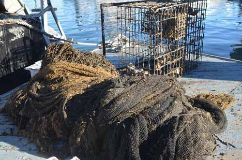 Pile of net and trap on dock