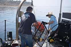 Volunteers Jeff Connor and Lisa Davis loading trap on deck