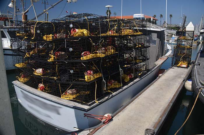 Lobster boat loaded with traps