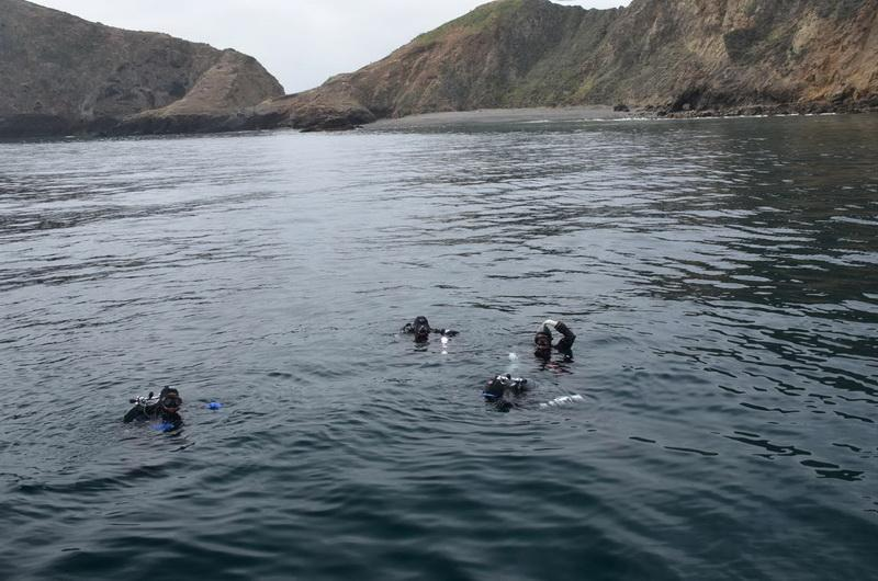 ODA Divers in the water, ready to haul out marine debris
