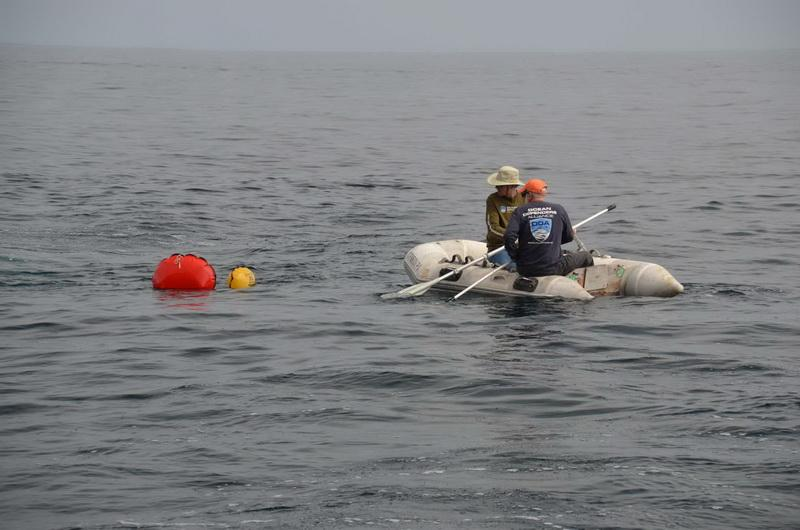 ODA Volunteers Jim Lieber and Tim Pearson in Zodiac, spot lift bags which indicate that ocean debris has been floated to the surface for retrieval