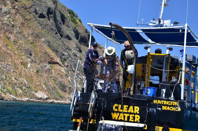 Volunteers Tim Pearson and Lisa Davies retrieve ghost gear and pull it onto the boat.