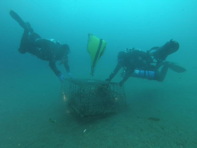 Ocean Defender divers and lobster trap - adding float bag