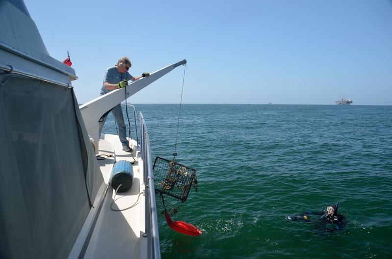 Ocean Defenders pulling ghost gear on board to dispose of it
