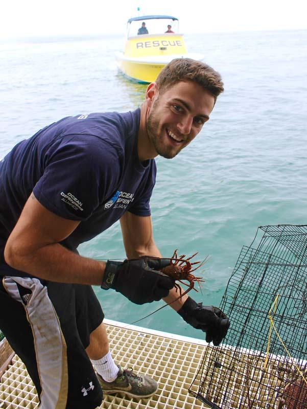 Freeing lobster from illegal trap