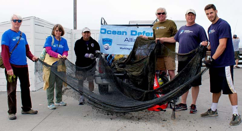 Squid net removed from Newport Beach pier