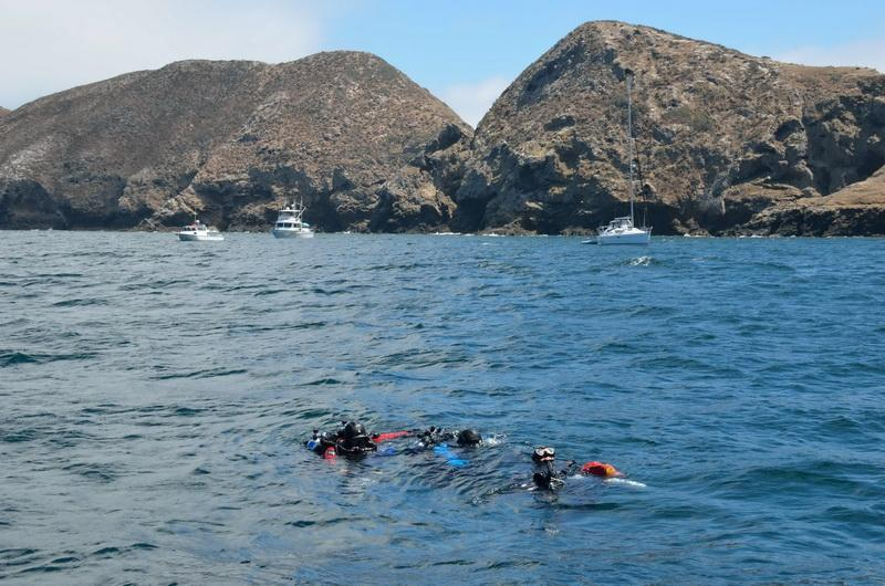 ODA Divers in water of Anacapa Island