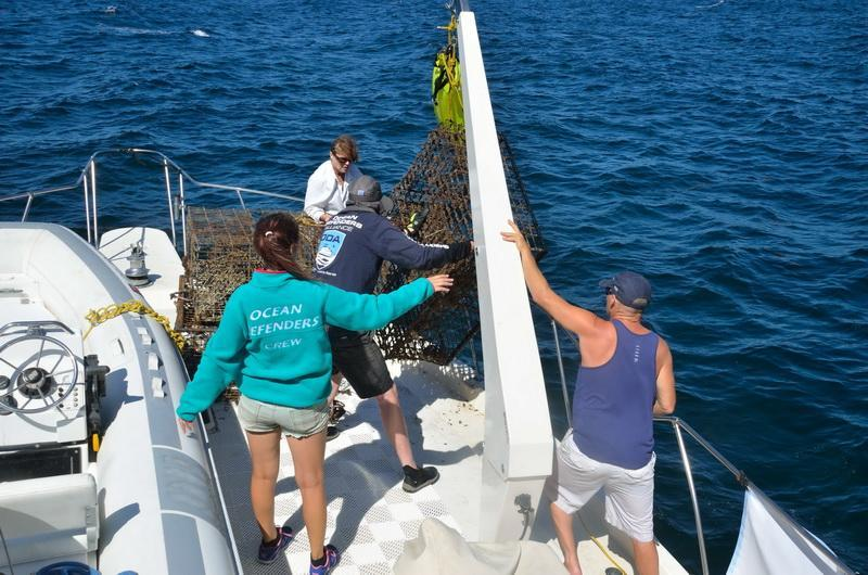 Ocean Defenders remove ghost gear.