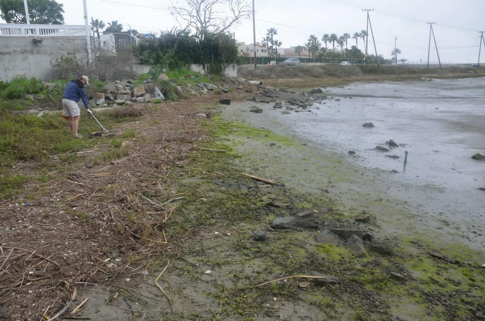 AFTER: A job well-done by the ODA Harbor Clean-up Crew
