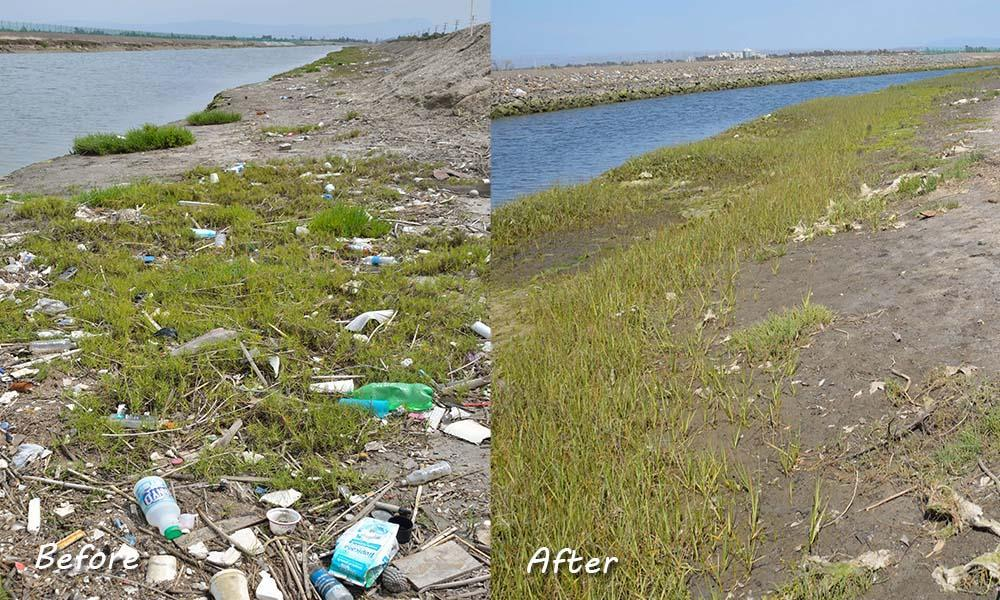 Bolsa Chica Shoreline before and after