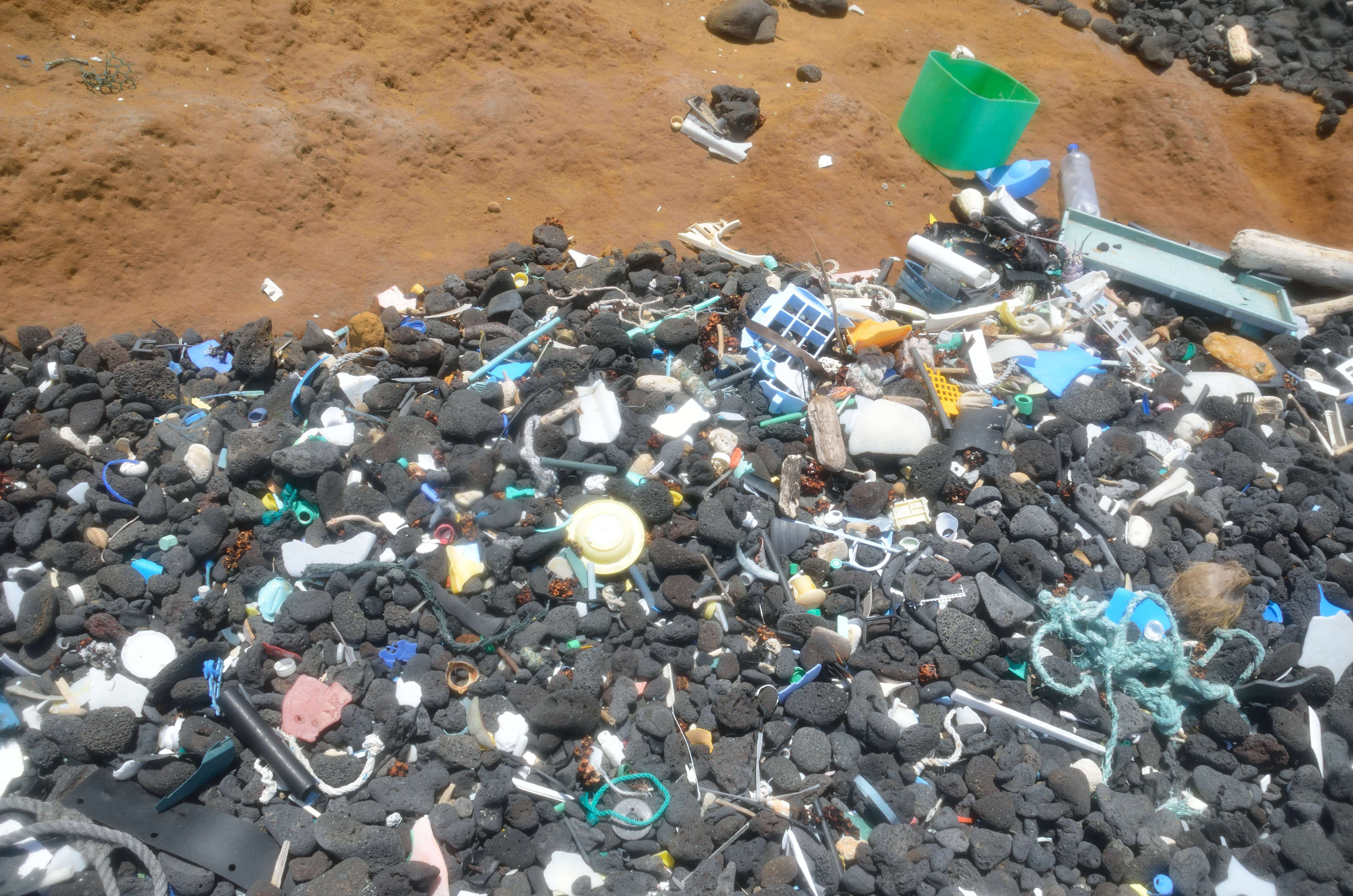 Greensand Beach plastics