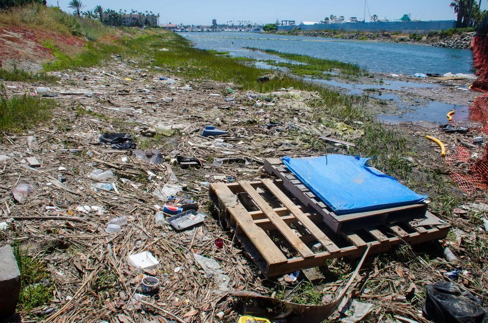 Bolsa Chica channel full of trash and plastic debris