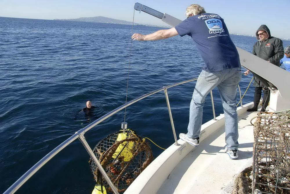 Ocean Defenders remove an illegal crab fishing trap