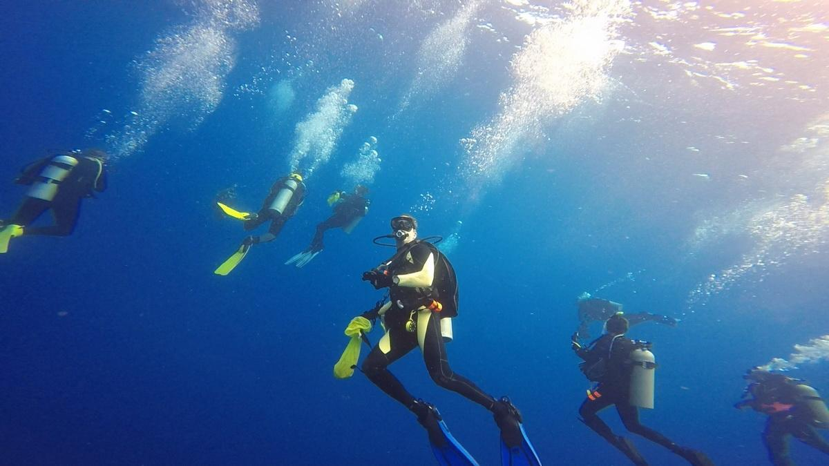 ODA Volunteer Divers plunge in