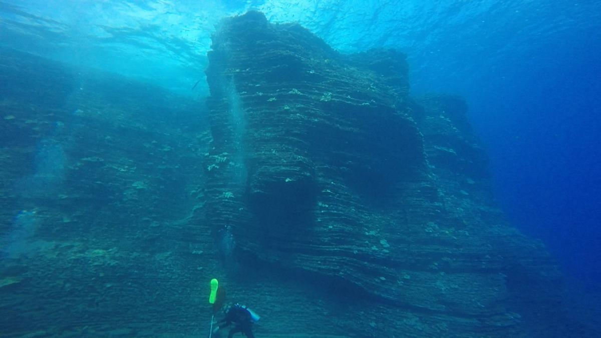 ODA Diver cleans ocean floor of debris