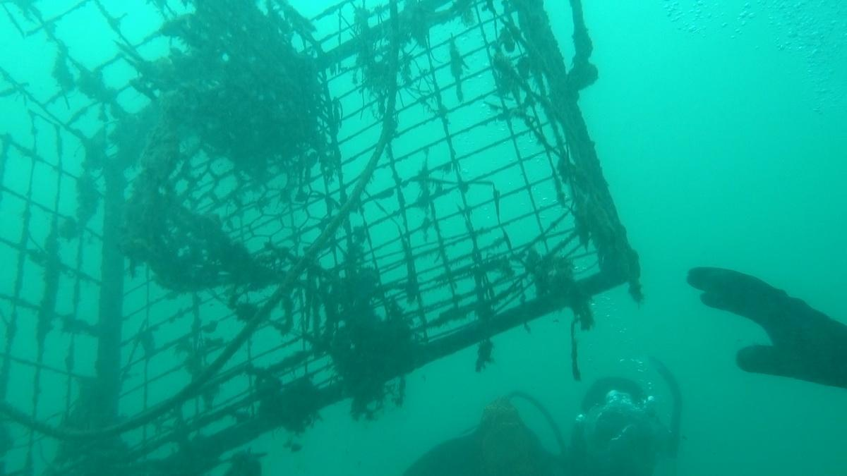 Trap being removed from ocean