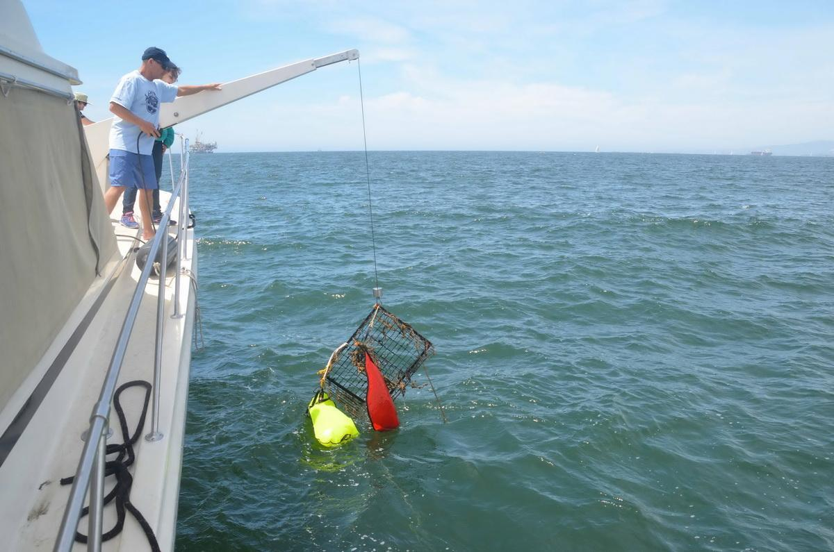 Trap on davit being pulled out of ocean