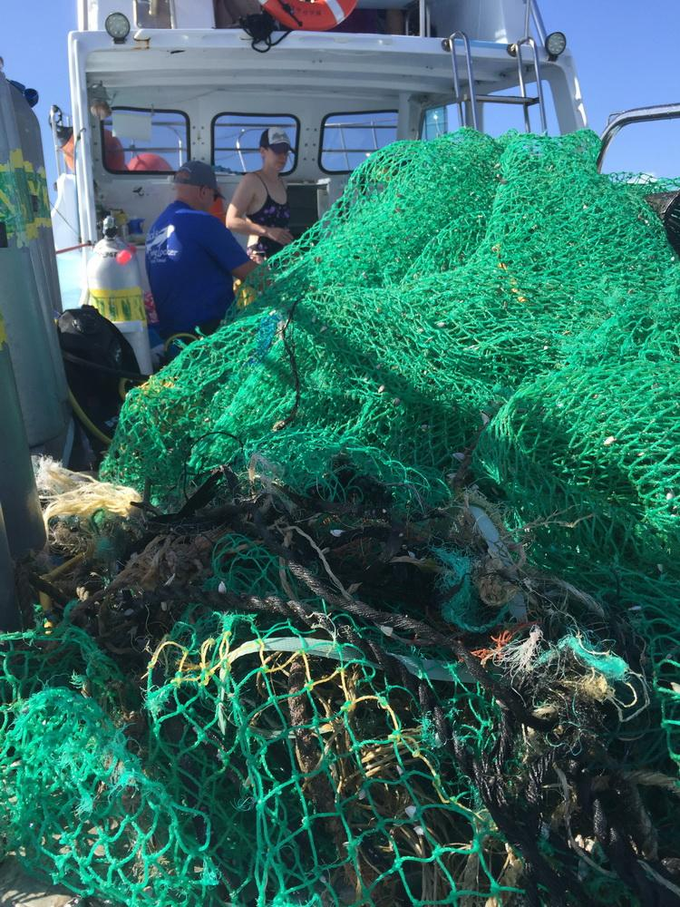 Ghost net hauled out of ocean