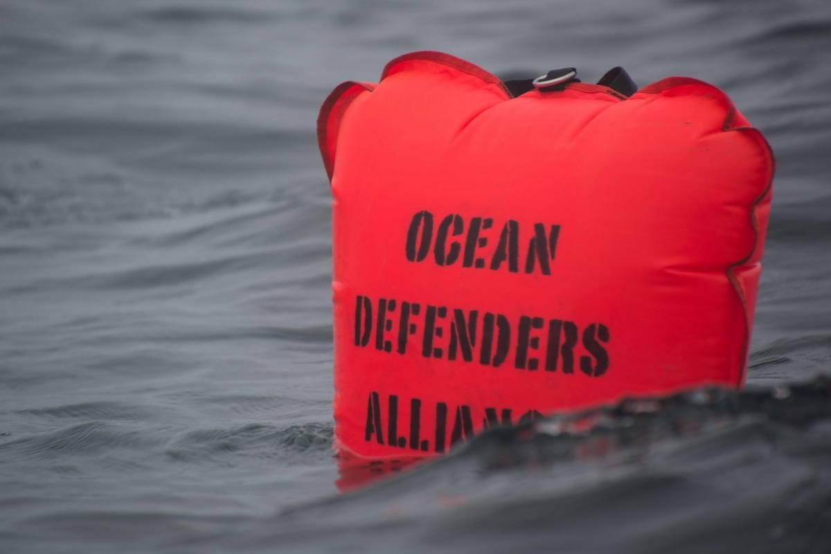 ODA ocean debris Lift bag