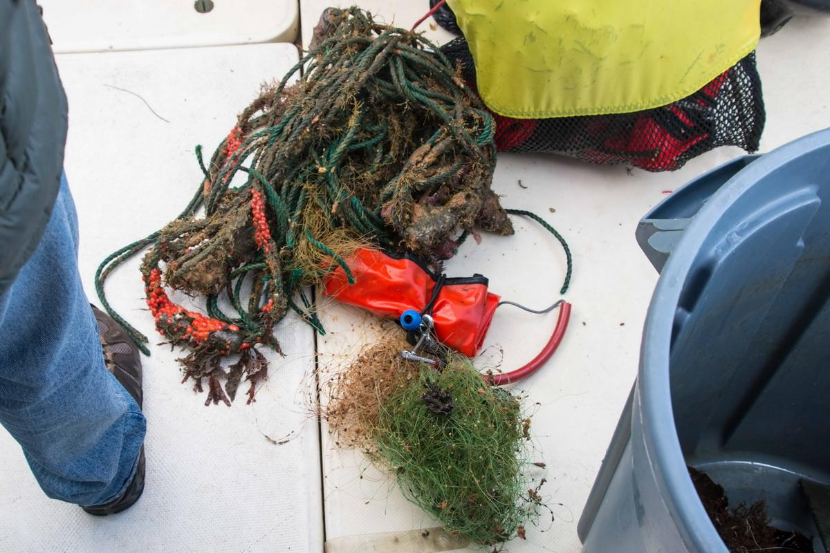 Recovered nets and fishing line