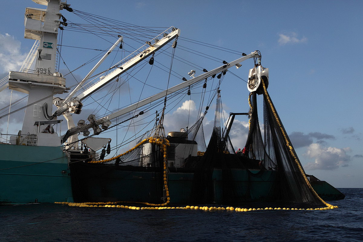 Purse seiner from Wikicommons