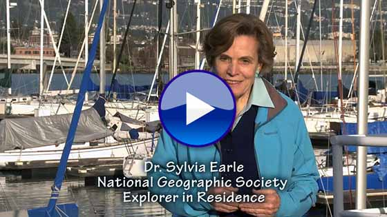 Sylvia Earle on the importance of ODA