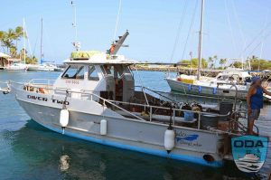 Hawaii-boats-Big-Island-Jacks-Diving-Locker-boat-Diver-Two-LR
