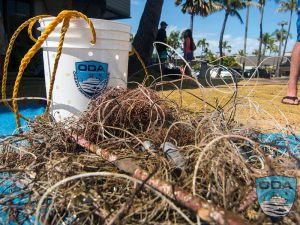 Hawaii-debris-Catch-o-the-day-15LR